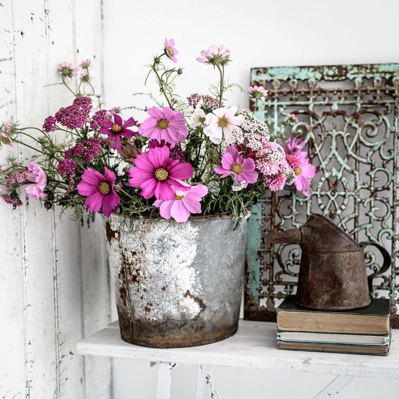 Pink Flowers Petals Props